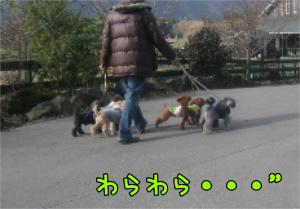 12.15blog 001125