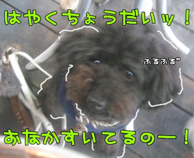12.14blog 5125215448