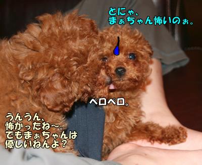 IMG_28612543.jpg