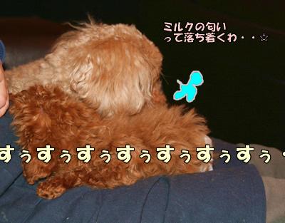 IMG_2912519.jpg