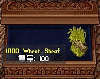小麦なのか大麦なのか不明な麦・・・ビールとかも造れるようになれば良いのに