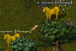 パラゴン二頭も同時に湧くって、どれくらいの確率なんだろうね?