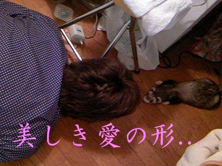 大好きだよ、海。 僕もさMitsuki。