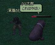 mabinogi_2007_03_16_045.jpg