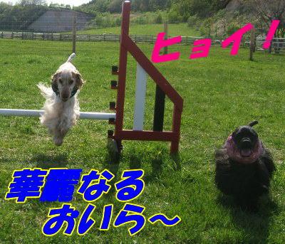 20070525224101.jpg