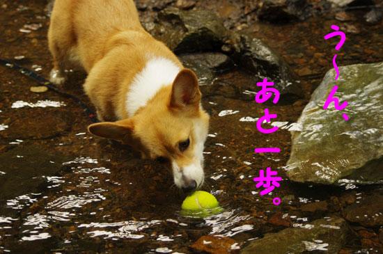 水ボール5