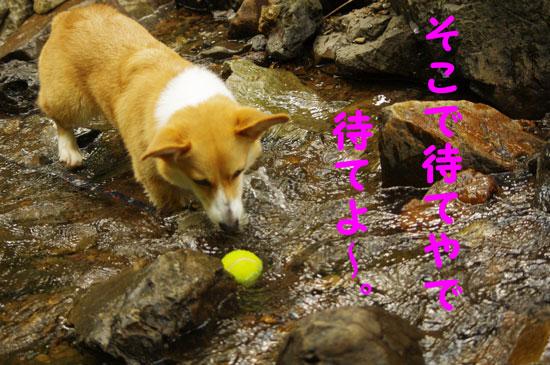水ボール2