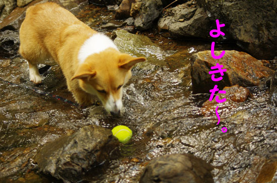 水ボール3