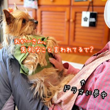 4_20110514194536.jpg