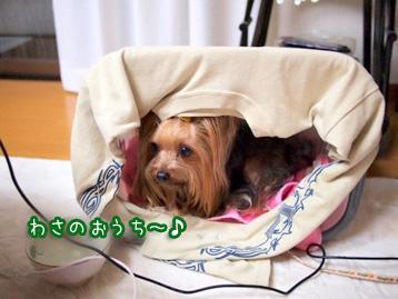 6_20110507200839.jpg