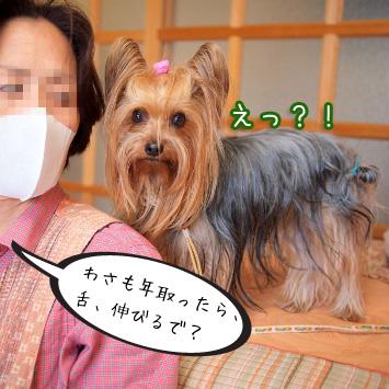 6_20110514194535.jpg