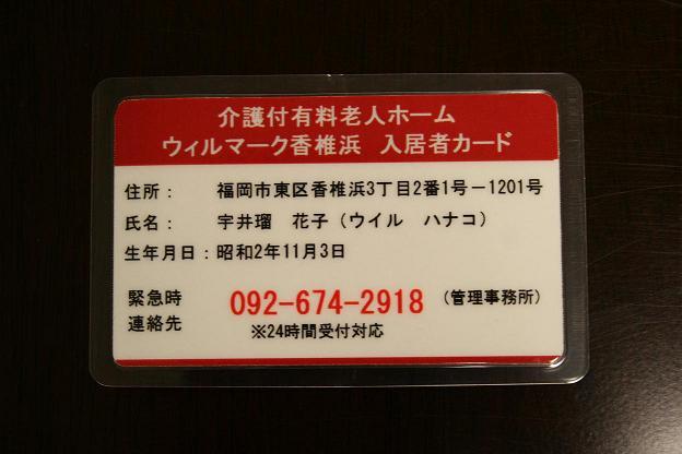 20070929104232.jpg