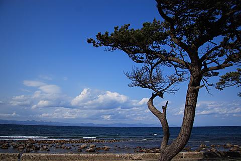 natsudomari_sea1.jpg