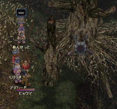 木の中の・・・