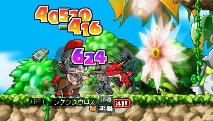 Maple0471.jpg