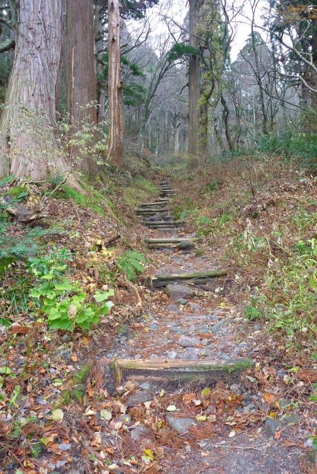 神社近くの登山道