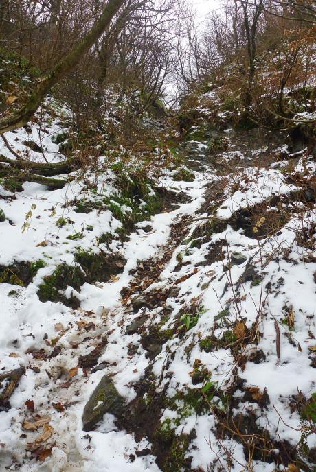 雪の増えた登山道