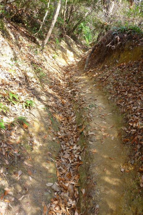 溝のある登山道