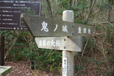 大桜への道標