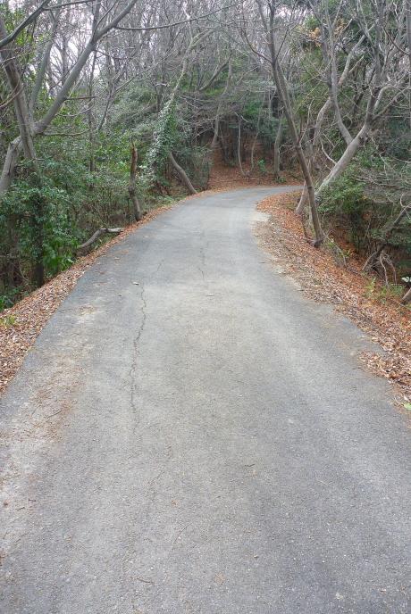 車道を下山