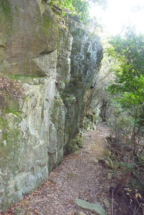 大岩下の下山路