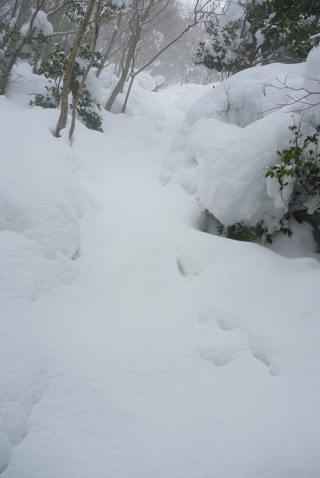 雪深い急登