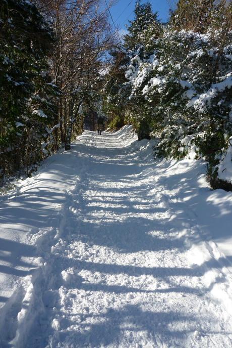 圧雪された道