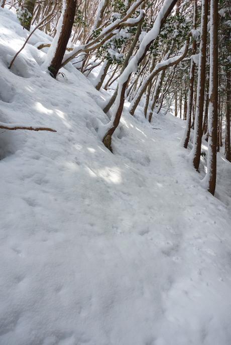 斜面のトラバース