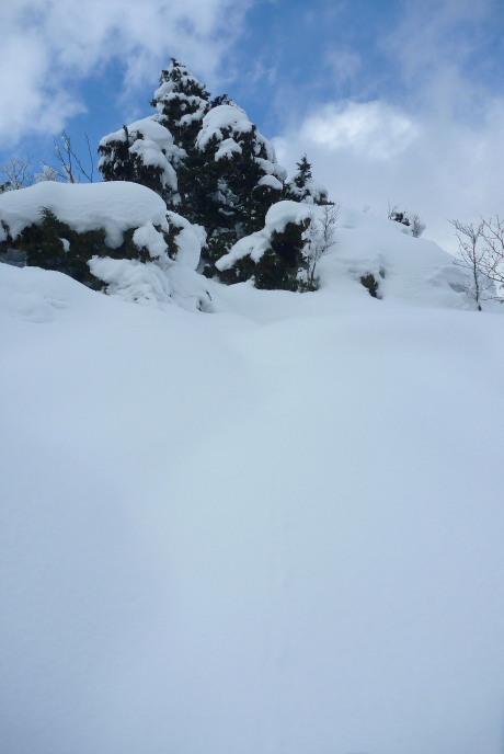 パウダーの急斜面