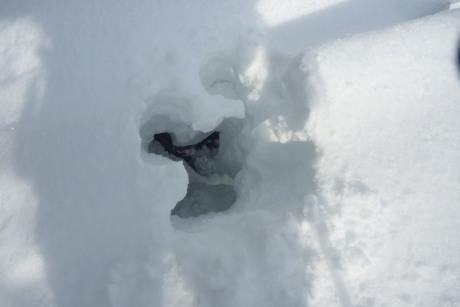 雪庇踏み抜き
