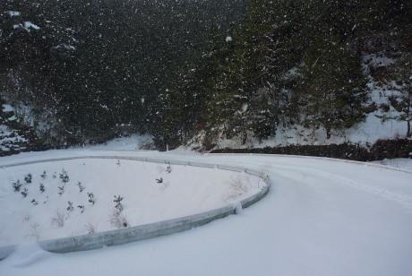 再び雪の林道
