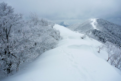 泉山への道