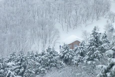 津山高校避難小屋