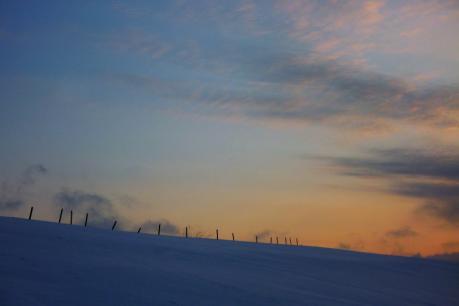 夜明けの丘