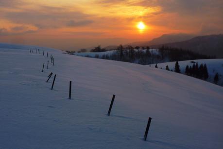 鉄柵と朝日