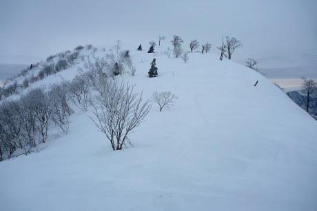 ギラガの山頂斜面
