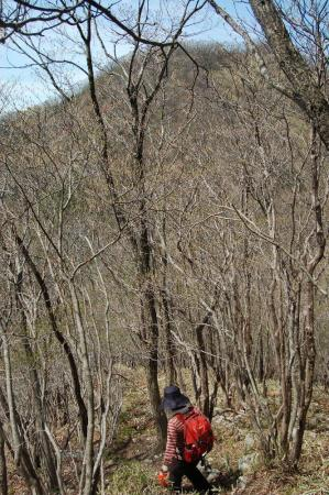 2大木戸山を見る1