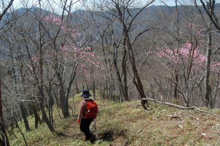 2薬師岳からの下り25