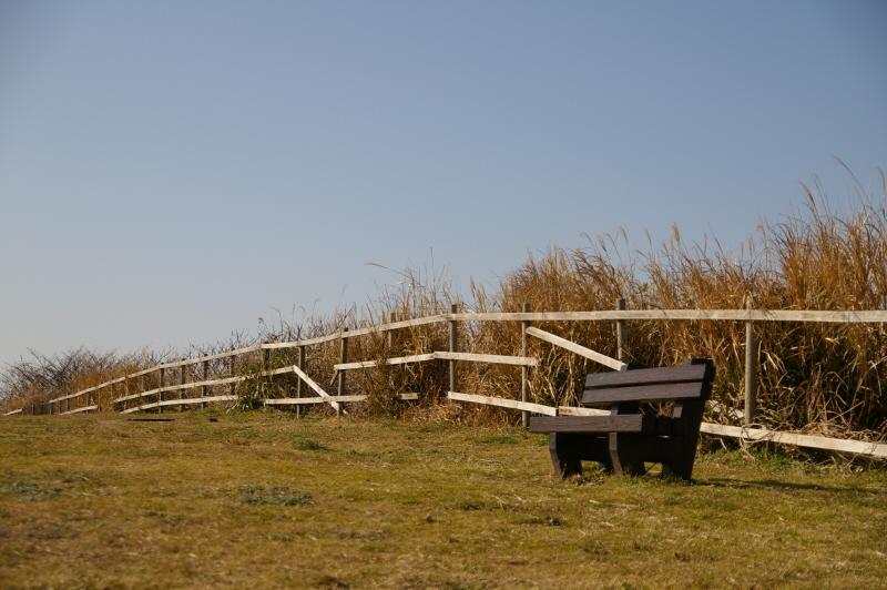 宮 川公園のベンチ