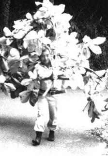 朴(ほう)の木を担ぐ中田さん
