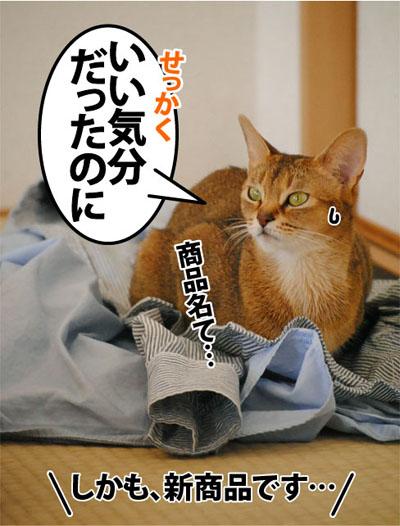 20111122_04.jpg