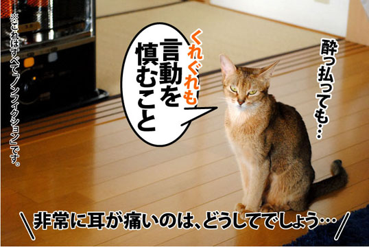 20111124_05.jpg