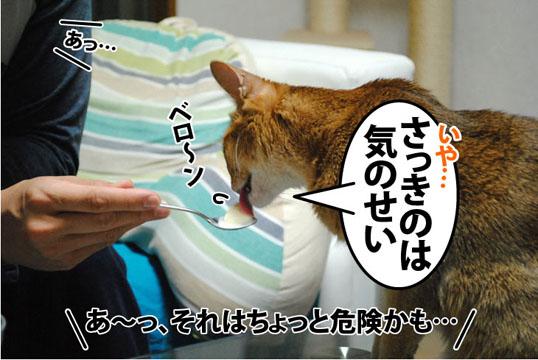 20111129_04.jpg