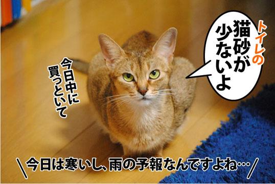 20111202_01.jpg
