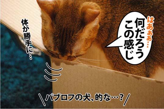 20111205_02.jpg