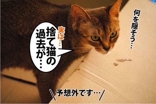 20111205_06.jpg