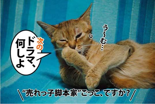 20111207_01.jpg
