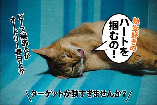20111207_04.jpg