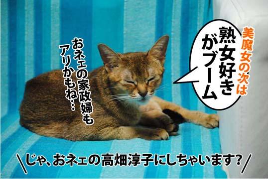 20111207_05.jpg