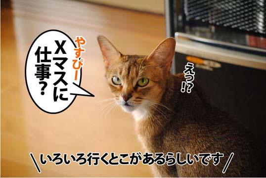 20111208_02.jpg